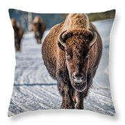 Bison In The Road - Yellowstone Throw Pillow