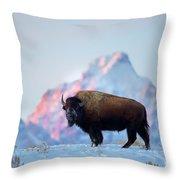 Bison Mountain Sunset Throw Pillow