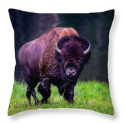 Bison Of Yellowstone Throw Pillow