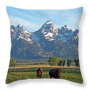 Bison Range Throw Pillow