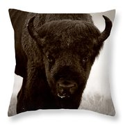 Bison Showdown Throw Pillow