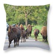 Bison Traffic Jam Throw Pillow