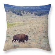 Bison Trail Throw Pillow