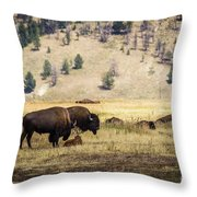 Bison With Calf Throw Pillow