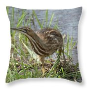Bittern Throw Pillow