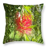 Bittersweet Bloom I Throw Pillow