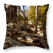 Blach Hills Terrain Throw Pillow