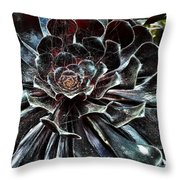 Black Aeonium Throw Pillow