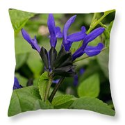 Black And Blue Salvia Throw Pillow