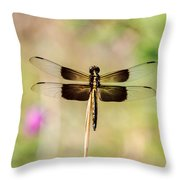 Black And Gold Dragonfly Throw Pillow
