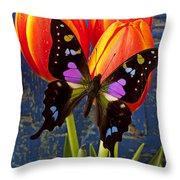 Black And Pink Butterfly Throw Pillow
