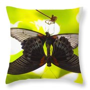 Black And Red Butterflies Throw Pillow