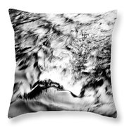 Black And Silver Throw Pillow