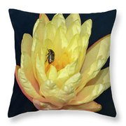 Black And White Beetle On Yellow Pond Lily Throw Pillow