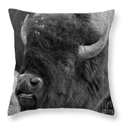 Black And White Bison In Heat Throw Pillow