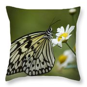 Black And White Butterfly On A Daisy Throw Pillow