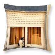Black And White Cat On The Windowsill Throw Pillow