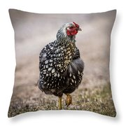Black And White Chicken Throw Pillow