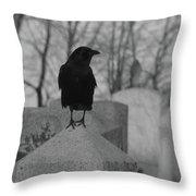Black And White Crow On Gray Stone Throw Pillow