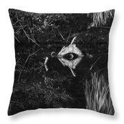 Black And White Cyclops Throw Pillow