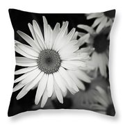 Black And White Daisy 1 Throw Pillow