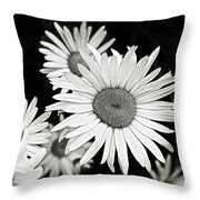 Black And White Daisy 3 Throw Pillow