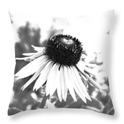 Black And White Daisy Throw Pillow