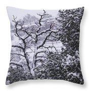 Black And White Day Throw Pillow