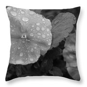 Black And White Dewy Pansy 1 Throw Pillow