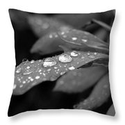 Black And White Dewy Petals Throw Pillow
