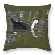 Black And White Duck Reflections Throw Pillow