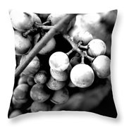 Black And White Grapes Throw Pillow