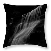 Black And White Hidden Falls Throw Pillow