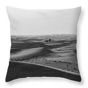 Black And White Hot Desert Throw Pillow