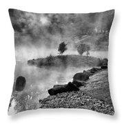 Black And White Japanese Garden Throw Pillow