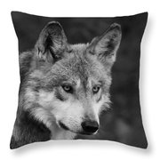 Black And White Mexican Wolf #4 Throw Pillow