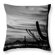 Black And White Night In Arizona Throw Pillow