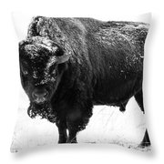 Black And White Of A Massive Bison Bull In The Snow  Throw Pillow