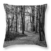 Black And White Path In Autumn  Throw Pillow
