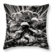 Black And White Pine Cone Wall Art Throw Pillow