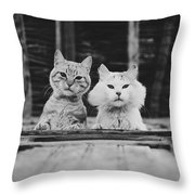 Black And White Portrait Of Two Aadorable And Curious Cats Looking Down Through The Window Throw Pillow