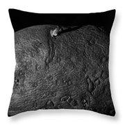 Black And White Potato Throw Pillow
