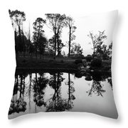 Black And White Reflected Throw Pillow