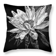 Black And White Reflection Throw Pillow