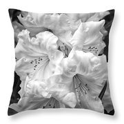 Black And White Rhododendron Throw Pillow