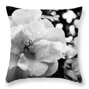 Black And White Rose Of Sharon Throw Pillow by Eva Thomas