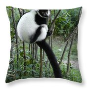 Black And White Ruffed Lemur Throw Pillow