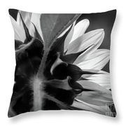 Black And White Sinflower 6 Throw Pillow