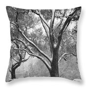 Black And White Snowy Landscape Throw Pillow