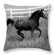 Black And White Steed Throw Pillow